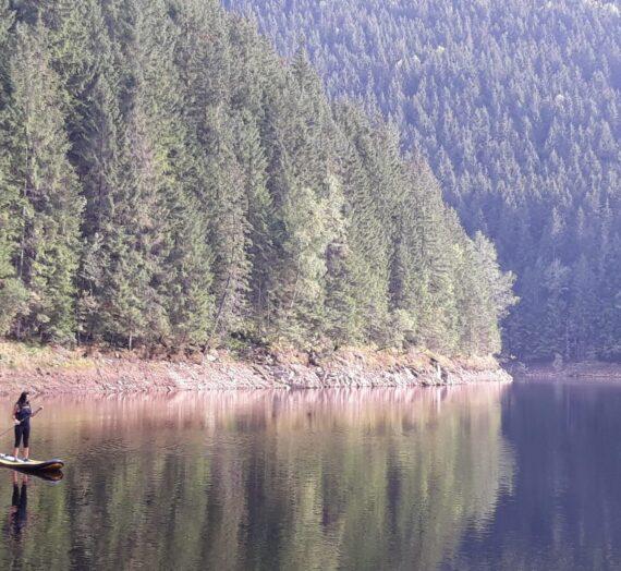 Cu paddle board-ul pe lacul Negovanu