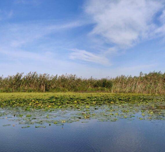 Vedere din Delta Dunarii
